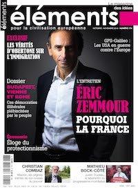 Eric Zemmour : pourquoi la France