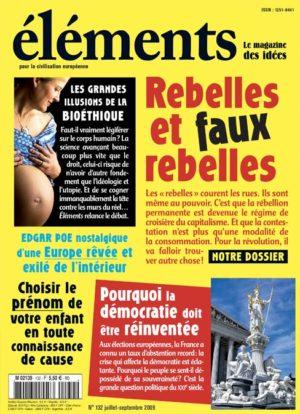 Rebelles et faux rebelles (Version PDF)