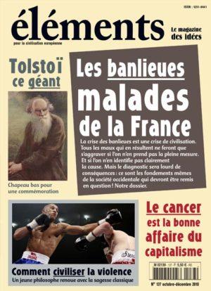 Les banlieues malades de la France